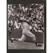 Carl Yastrzemski Swing Autographed